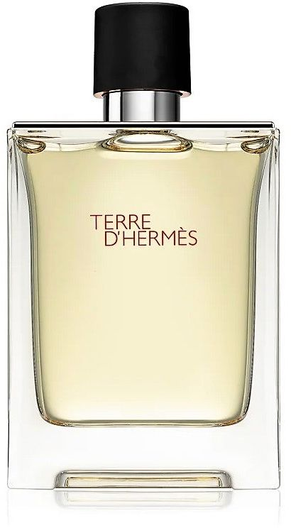 Terre D'Hermes by Hermes for Men - Eau de Toilette, 100ml